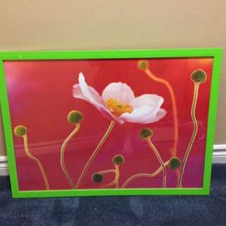 EUC Large Hanging Flower Picture
