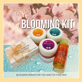 LILY'S TOUCH BLOOMING KIT