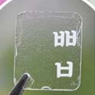 White Letter Korean Hangul Alphabet Keyboard Transparent Sticker