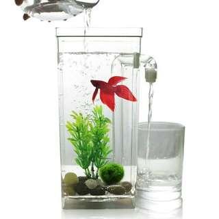 Auto Clean Innovative Fish Tank