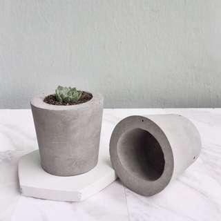 Mini Cement Planters