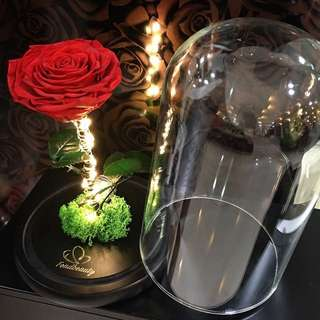 Teacher's Day Present/ Corporate Gifts/Preserved Flowers/Enchanted Dome/ Home Decor