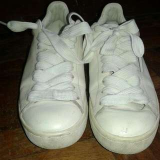 Coach White Sneaker 100% Authentic