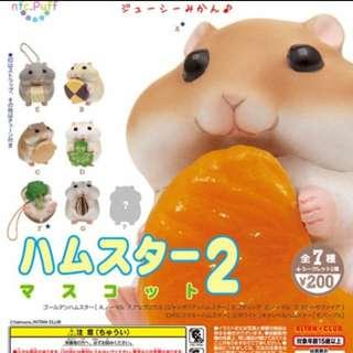 奇譚 倉鼠 老師 吃東西 絕版扭蛋盒玩