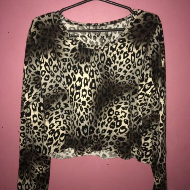Leopard Print Long Sleeve Crop Top
