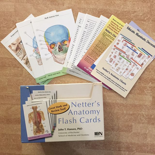 Netters Anatomy Flash Card Second Edition Textbooks On Carousell