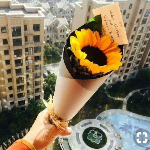Single Stalk Sunflower Bouquet / Get well soon Bouquet ...