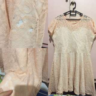 Dress Lace Bigsize