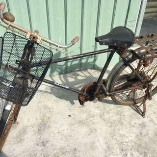 阿公的卡踏車