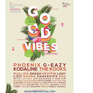 Good vibes 2 day pass