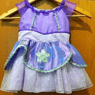 Princess Sofia Dress (2T)