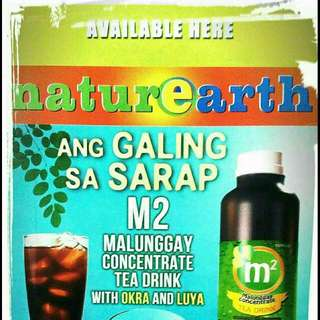 Malungay Herbal Tea 1liter