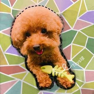 狗狗用品橡膠耐咬磨牙魚骨頭寵物玩具