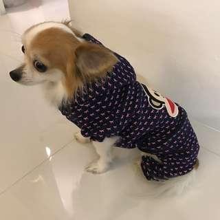 Pet Fashion - Paul Frank Hoodie