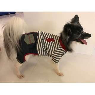 Pet Fashion - Woof Lauren
