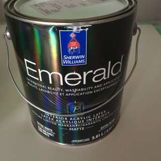 Sherwin Williams Emerald Matte 1 Gallon