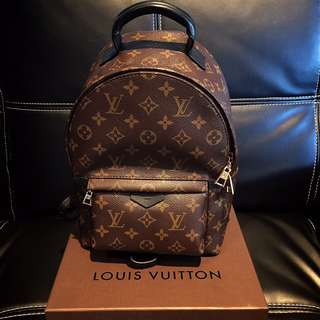LOUIS VUITTON LV Palm Springs Backpack