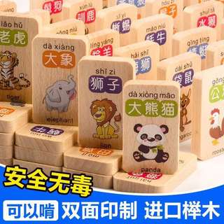 100 Pieces Kids Toy  / Chinese Learning Wood /