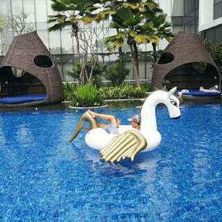 Pegasus Gold Floaties