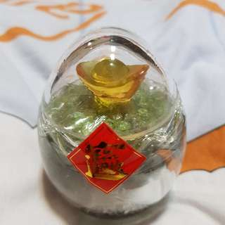 5 Crystals Container