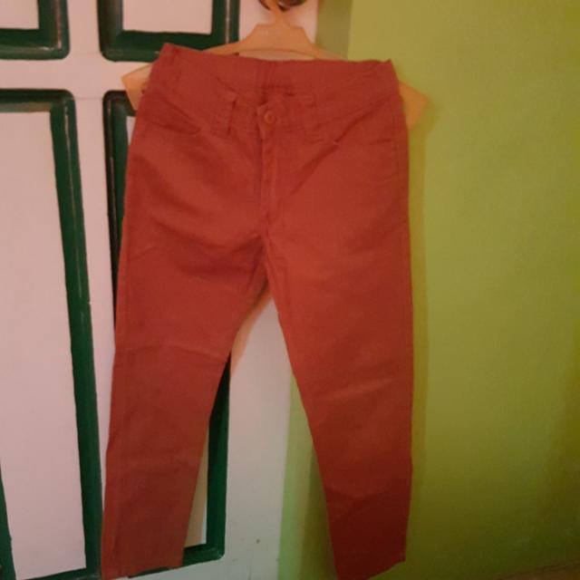 Palomino Jeans Size 12