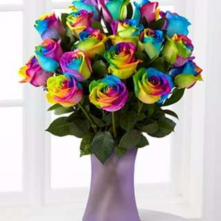 Rainbow Roses In A Vase