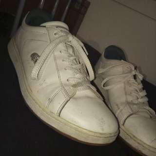 Lacoste Sneakers (MENS)