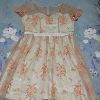 Party Dress Peach