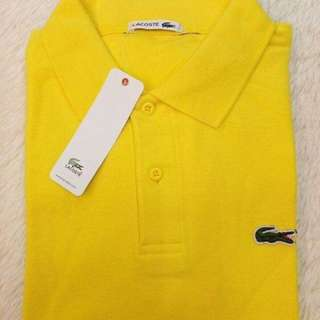 LIMITED LACOSTE POLO SHIRT