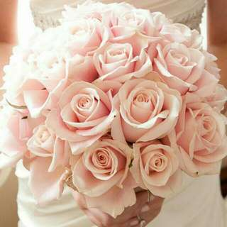 Bridal Pink Light Roses Hand Tied Bouquet With Ribbon - Georgina