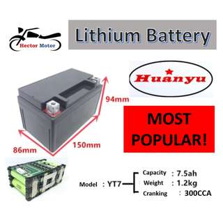 LiFePO4 Lithium Battery with BMS