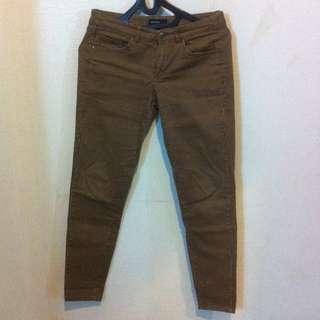 Mango Striped Pants