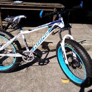 Mountain Bike Fat Bike