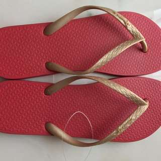 Sandal Jepit Ipanema Female Cewe New