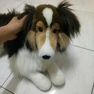 🚚 #狗玩偶
