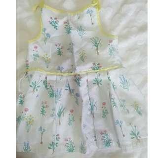 gingersnap dress size 24