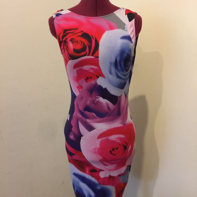 Fitted Rose Printed Dress
