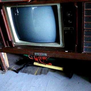 Tv Nasional Lama
