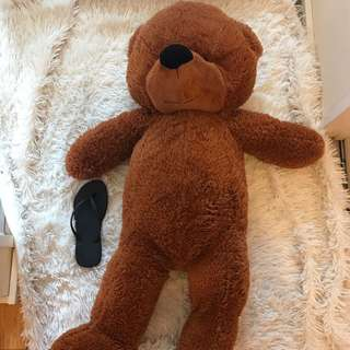 Huge Teddy