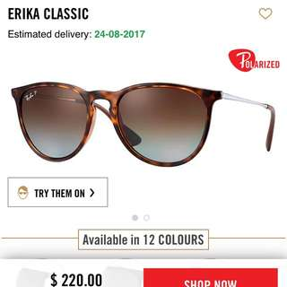 BNIB Erika Classic Ray Ban Sun Glasses Polarised