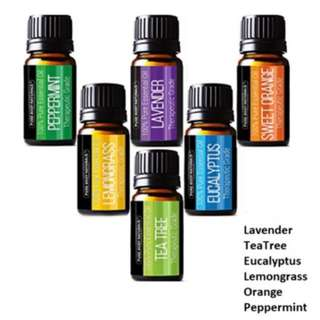 Pure Body Natural Essential Oils Set,6 Bottles 10ml Each