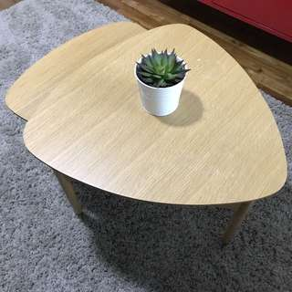 Coffee Table (two piece set)