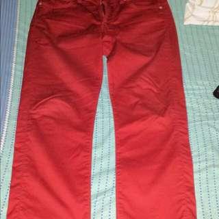 Uniqlo Slim Fit Pants
