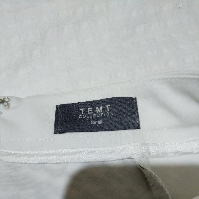 Temt Skirt (Size S)