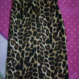 Rok Leopard