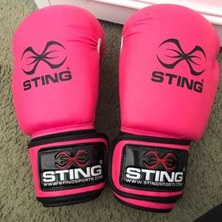 Sting Boxing Gloves