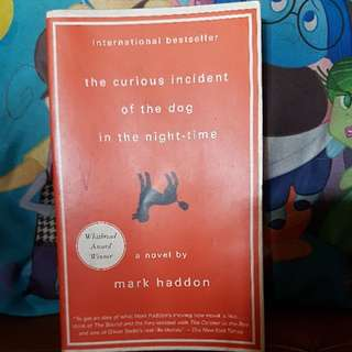 The Curious Incident Of The Dog In The Night Time (Mark Haddon)