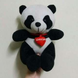 Panda Collection Set