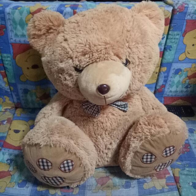 Big Soft Teddy Bear
