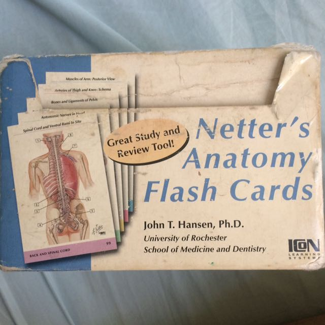 Netters Flashcards Anatomy Textbooks On Carousell